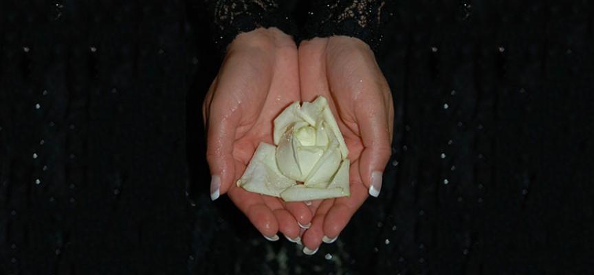Lepe i negovane ruke