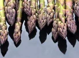 Špargla — više od hrane