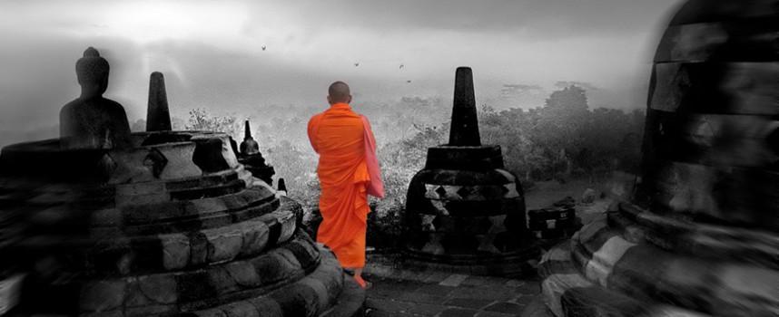 101 zen pričа — narav