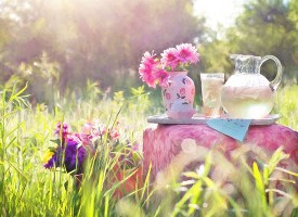 15 načina kako limunada može u potpunosti transformisati vaše zdravlje