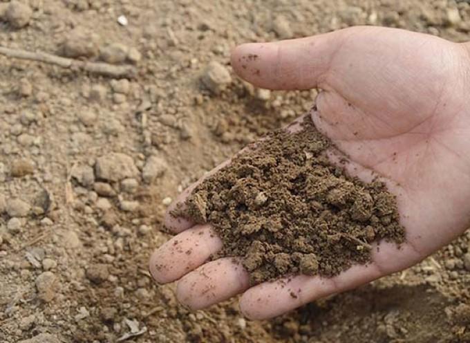 Kako je biti farmer organske hrane