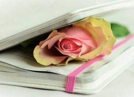 Poezija – esencija svih umetnosti