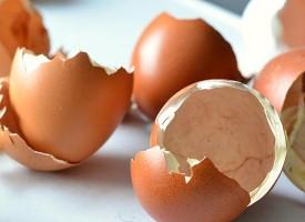 Ne bacajte ljuske jajeta